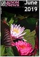 AUSOM News 2019-06